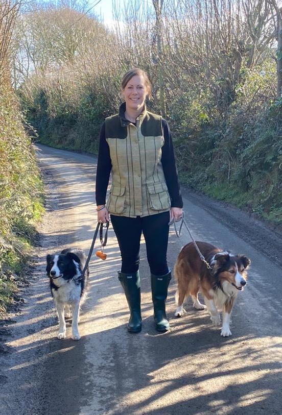 woman walking dogs, sheepdog